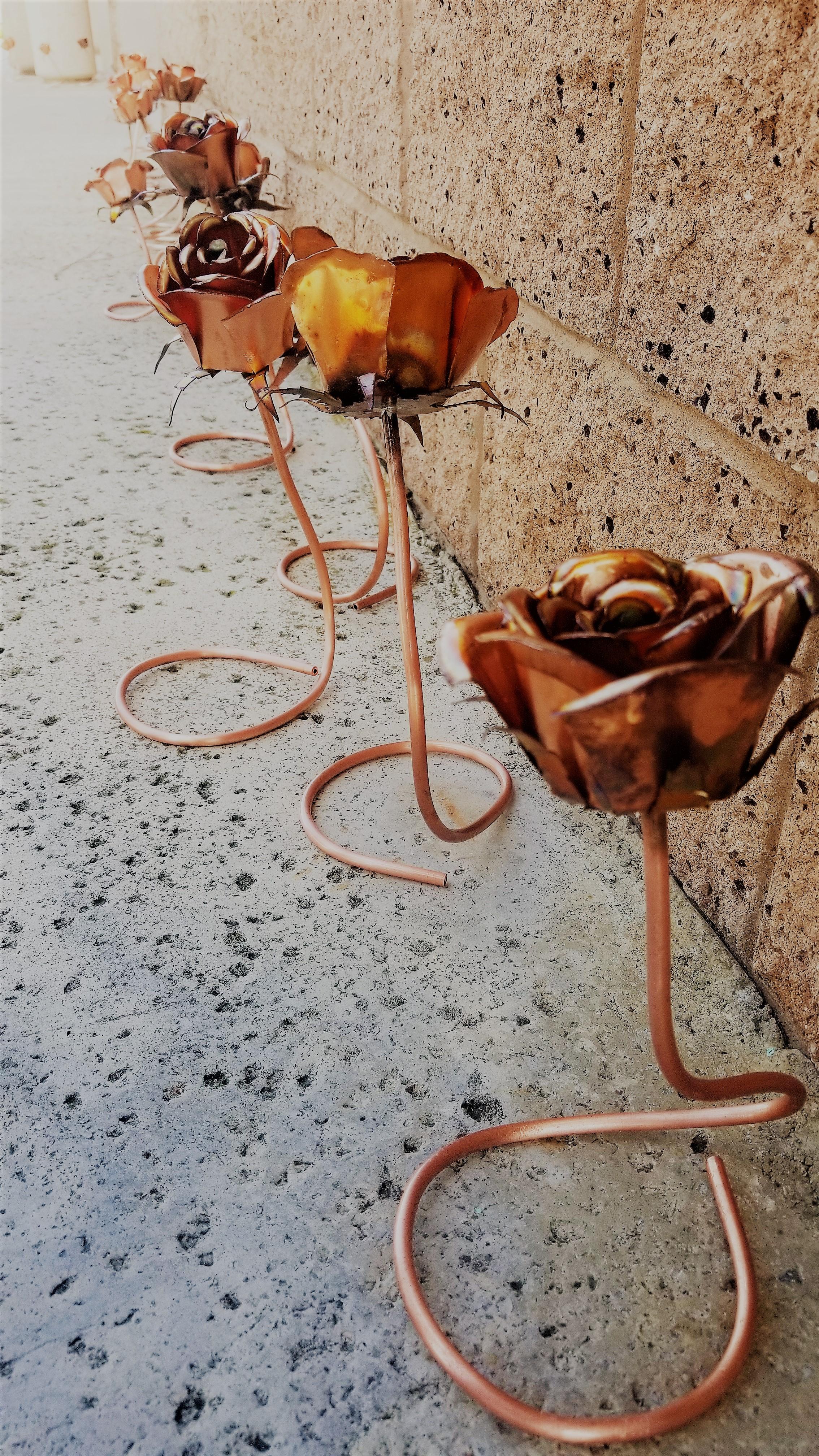 Copper Roses.JPG