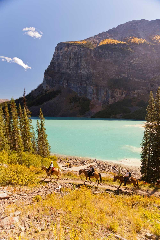 Horseback_Riding_Lake_Louise_Plain_Of_Six_Glaciers_Tea_House_Paul_Zizka_7_Vertical1500-1000.jpg