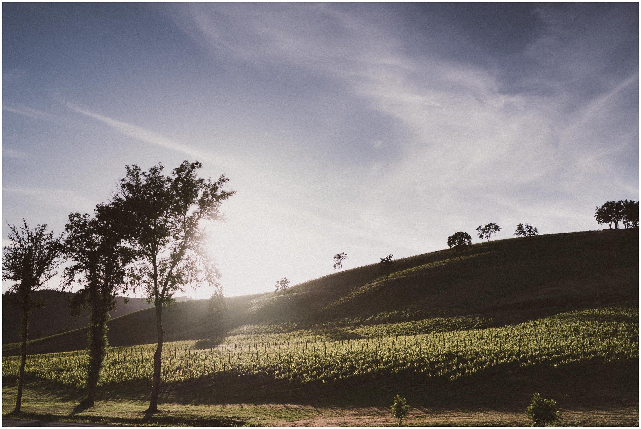 TONY-GAMBINO-PHOTOGRAPHY-BEND-OREGON-WEDDING-SHOOT-000_1535 sunset at maysara.jpg