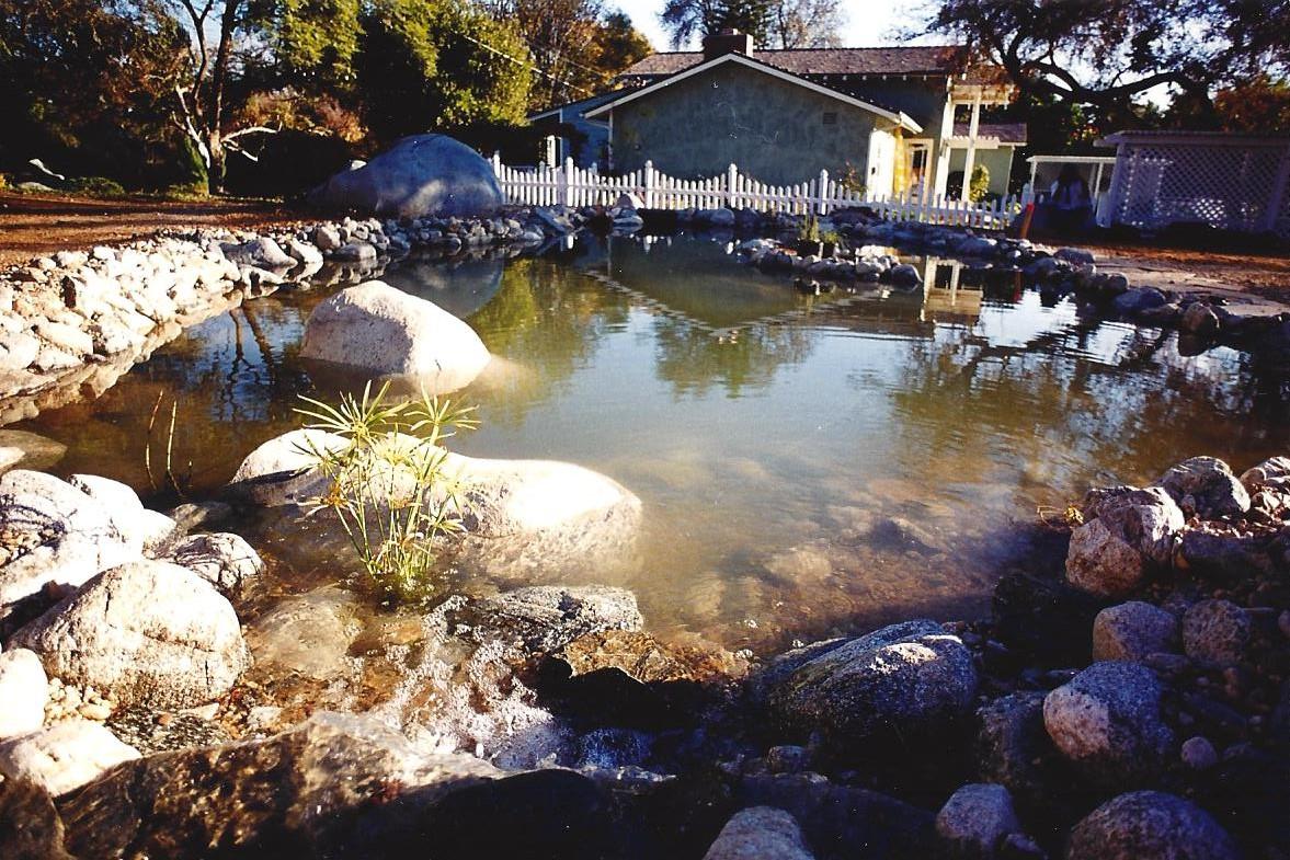 Faux, Bio pond, Gutzmer 1.jpg