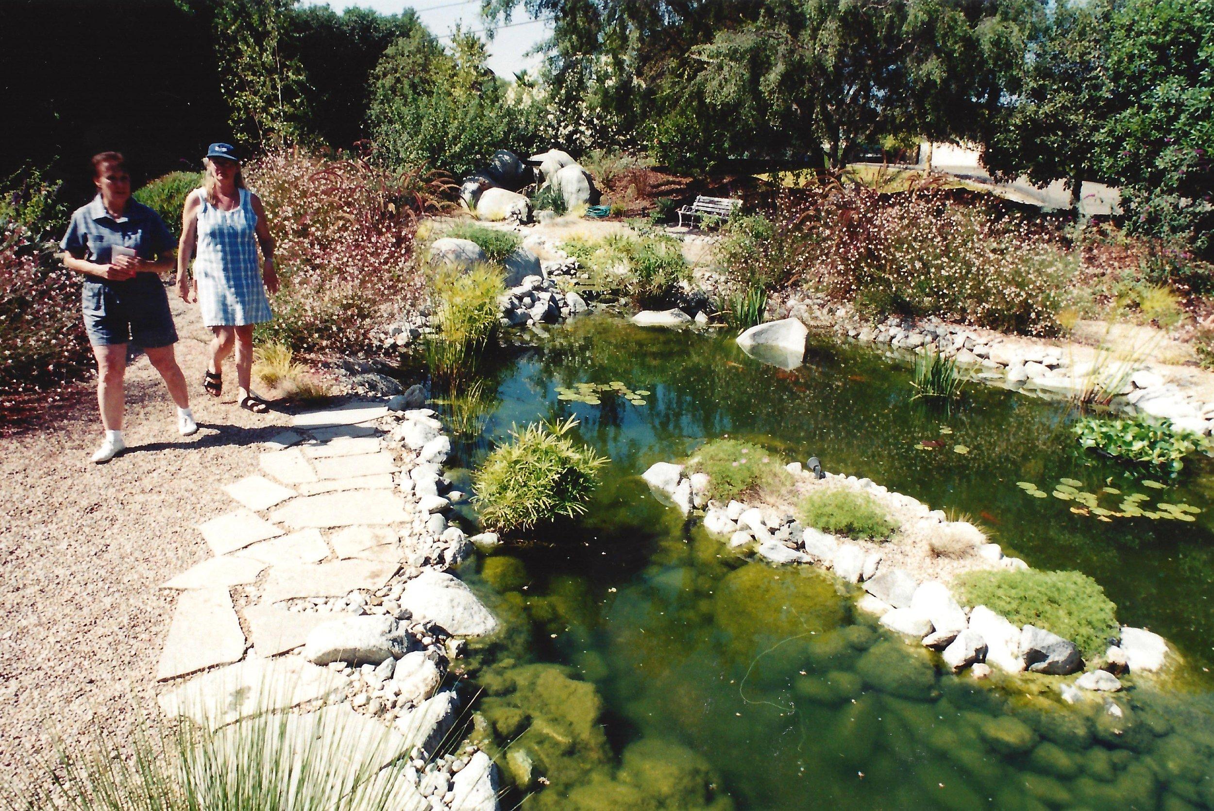 Faux, Bio pond, Gutzmer 3.jpg