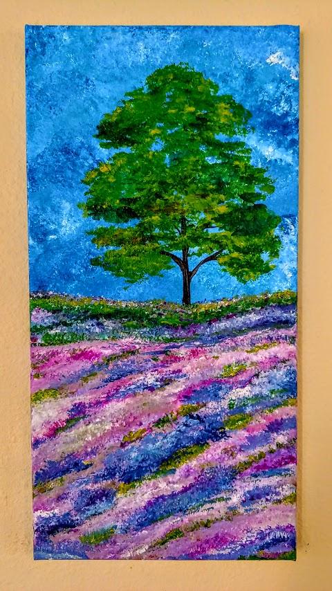$35 Lavender Fields