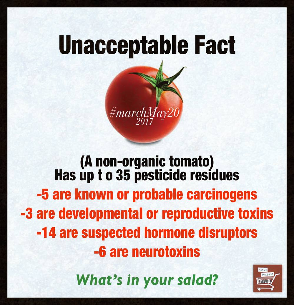 Facts Against Tomatoes