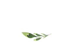 HannahDeer-FooterLogo-Small-NEW.png