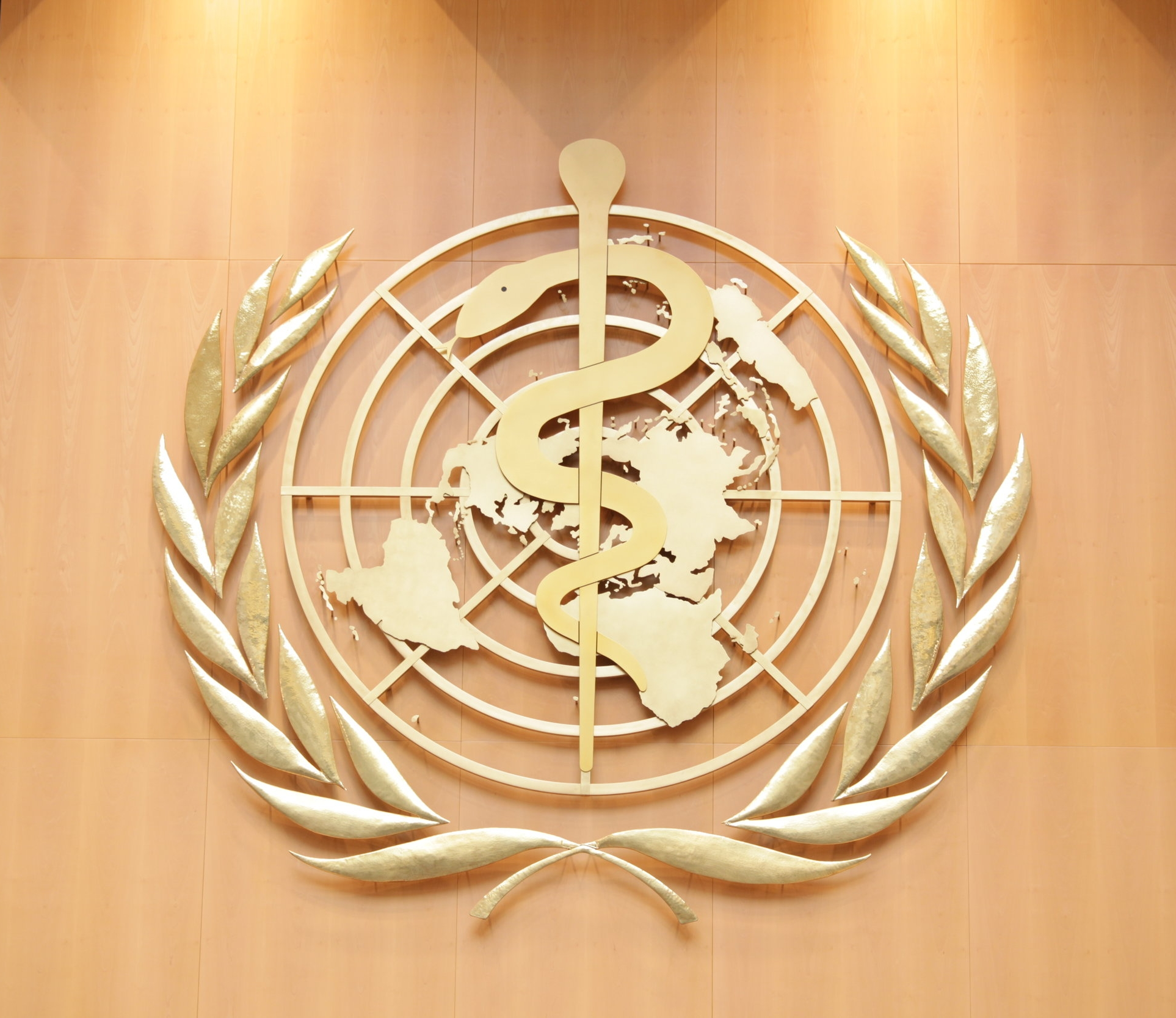 World Health Organization recognizes acupuncture  as an effective treatment for musculoskeletal pain, digestive issues and neurological conditions.
