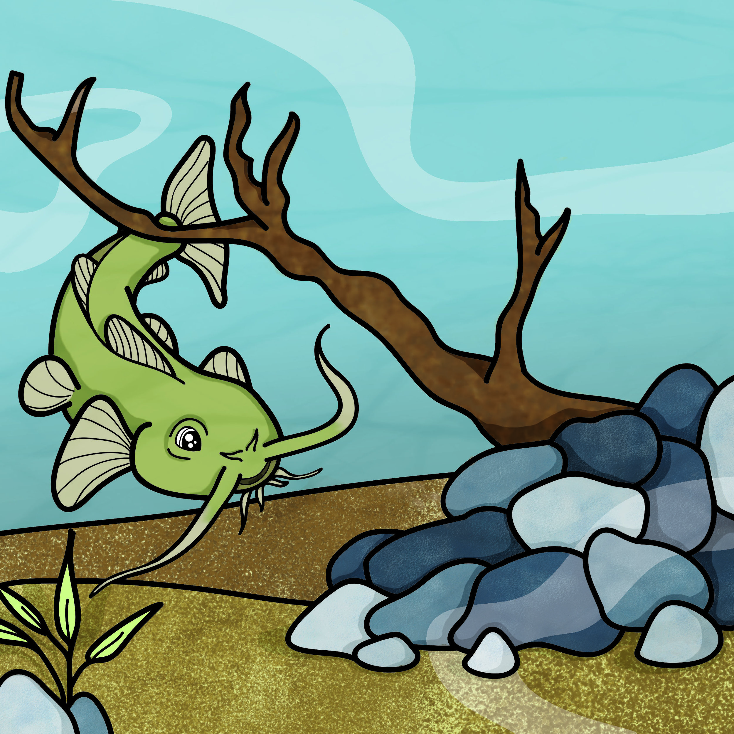 catfish page.jpg