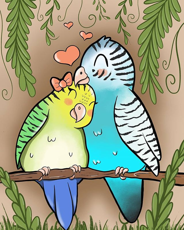 I'll be debuting my latest print today at the Roselle Park Art Festival! Come check it out as well as all the other great stuff at the art walk. @roselleparkarts #lovebirds #parakeet #parakeets #birds #art #illustration #illustrator #cuteartfeatured #childrensillustrations #childrensbook #childrensbookart #childrensbookillustrations #cute  #kawaii #kawaiiartist #kawaiiart