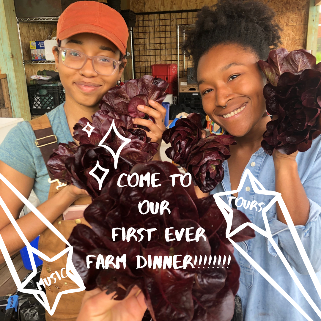 Come to our FIRST EVER FARM DINNER!!!!!!!!.png