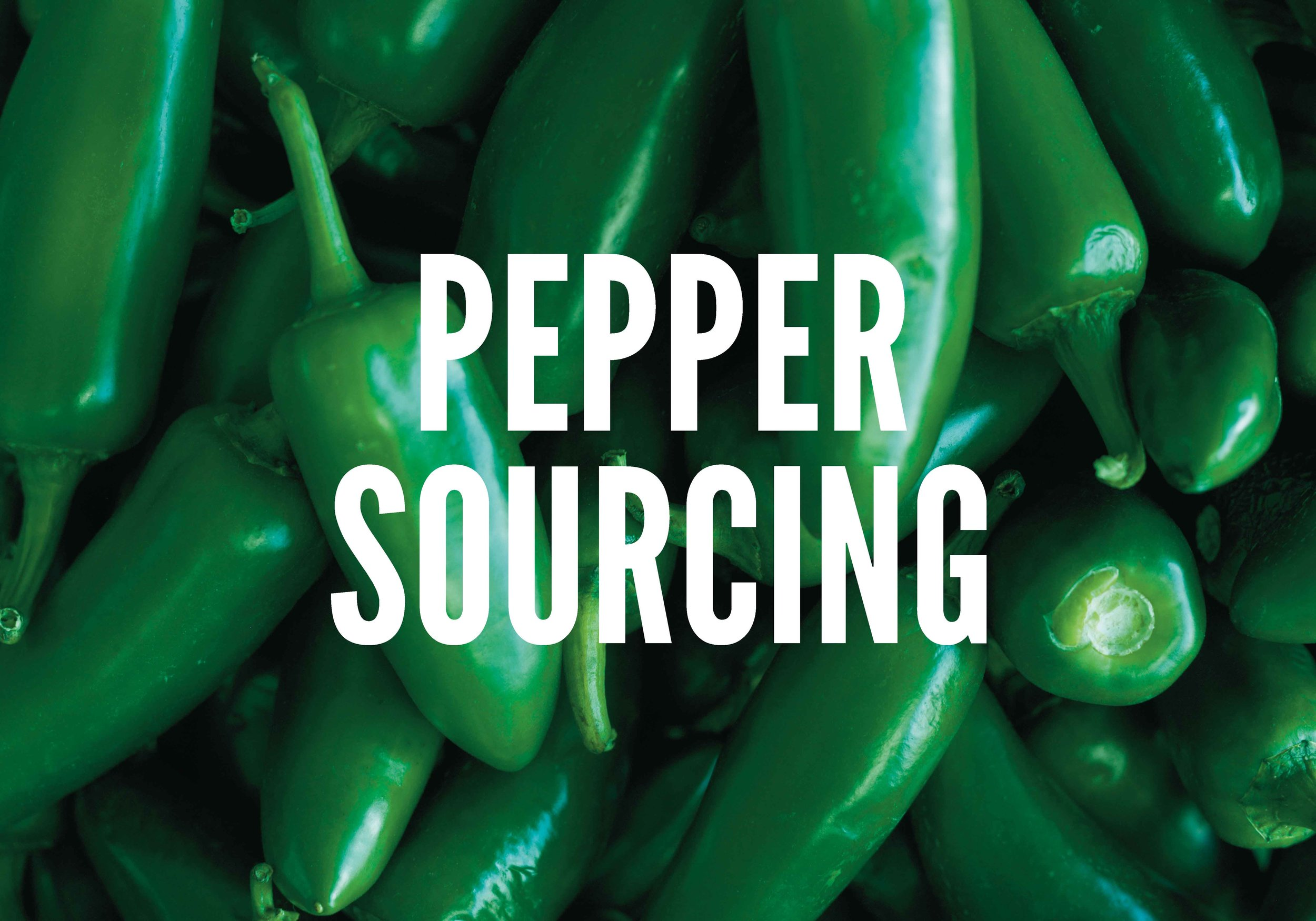COVER. Pepper Sourcing.jpg