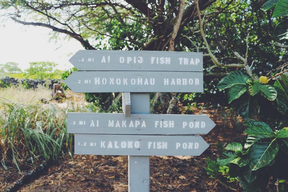 where to go next the gold coast travel tourism blogger vlogger influencer collaboration carla maria bruno travel with me tv blog youtube hawaii tips kona norwegian cruise line.JPG