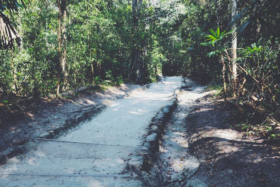 the pathway tikal flores guatemala mayan tours mayan ruins backpacking carla maria bruno travel blogger vlogger influencer.jpg