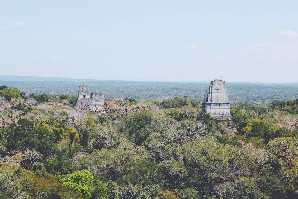 views from the top tikal flores guatemala mayan tours mayan ruins backpacking carla maria bruno travel blogger vlogger influencer.jpg