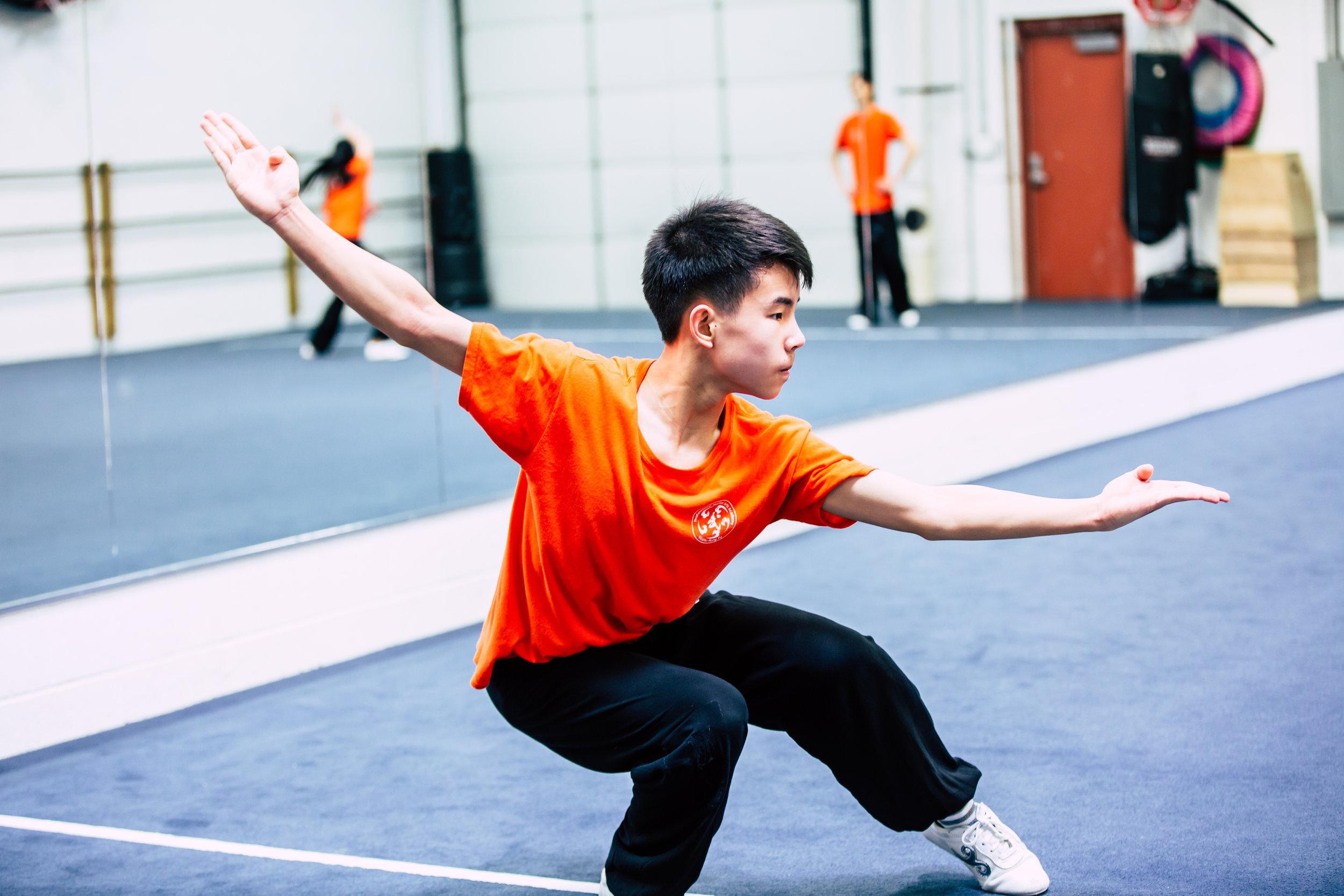 Wushu Kung-fu -