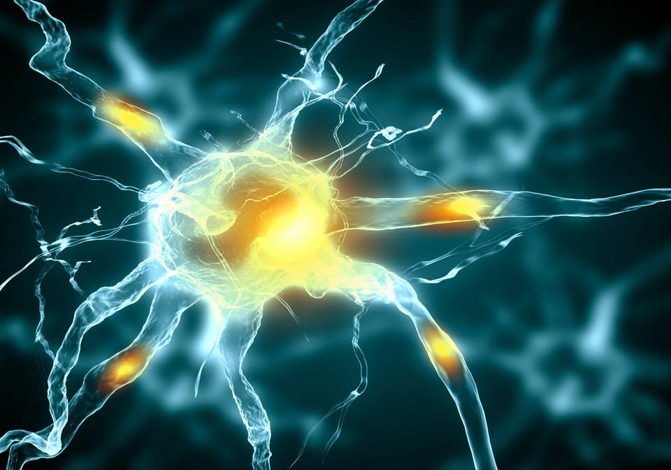 Neuromodulation.jpg