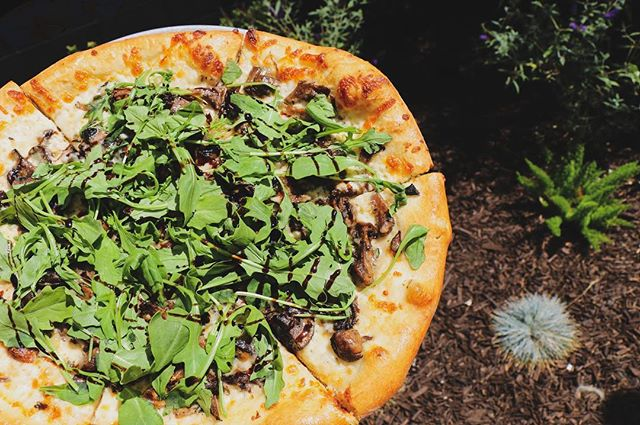 It's a gorgeous Saturday and an even more gorgeous pizza 😍🍕 Our Mushroom and roasted garlic pizza comes with thyme, wild arugula with our Alfredo sauce topped with balsamic drizzle. • Make your reservations online at www.tbrsd.com or call (858)261-0720