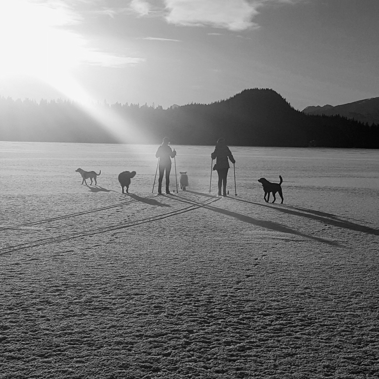 COLLABORATION - We're better together. There's magic in shared vision and ideas. A flexible, inclusive approach consistently results in a deliverable that is larger than its parts.