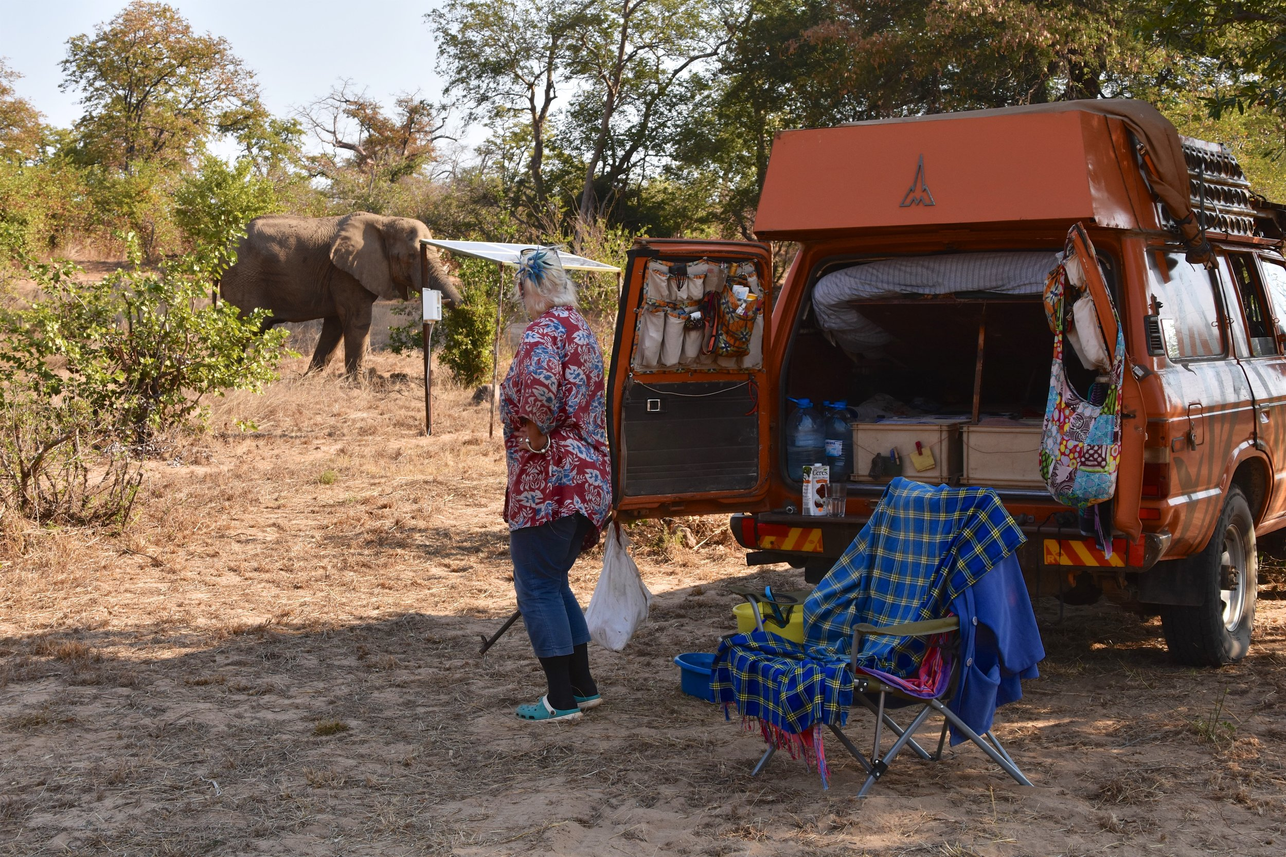 Camping with elephants, that's the Africa I love!