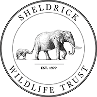 Sheldrick Wildlife Trust Logo 200x200.png