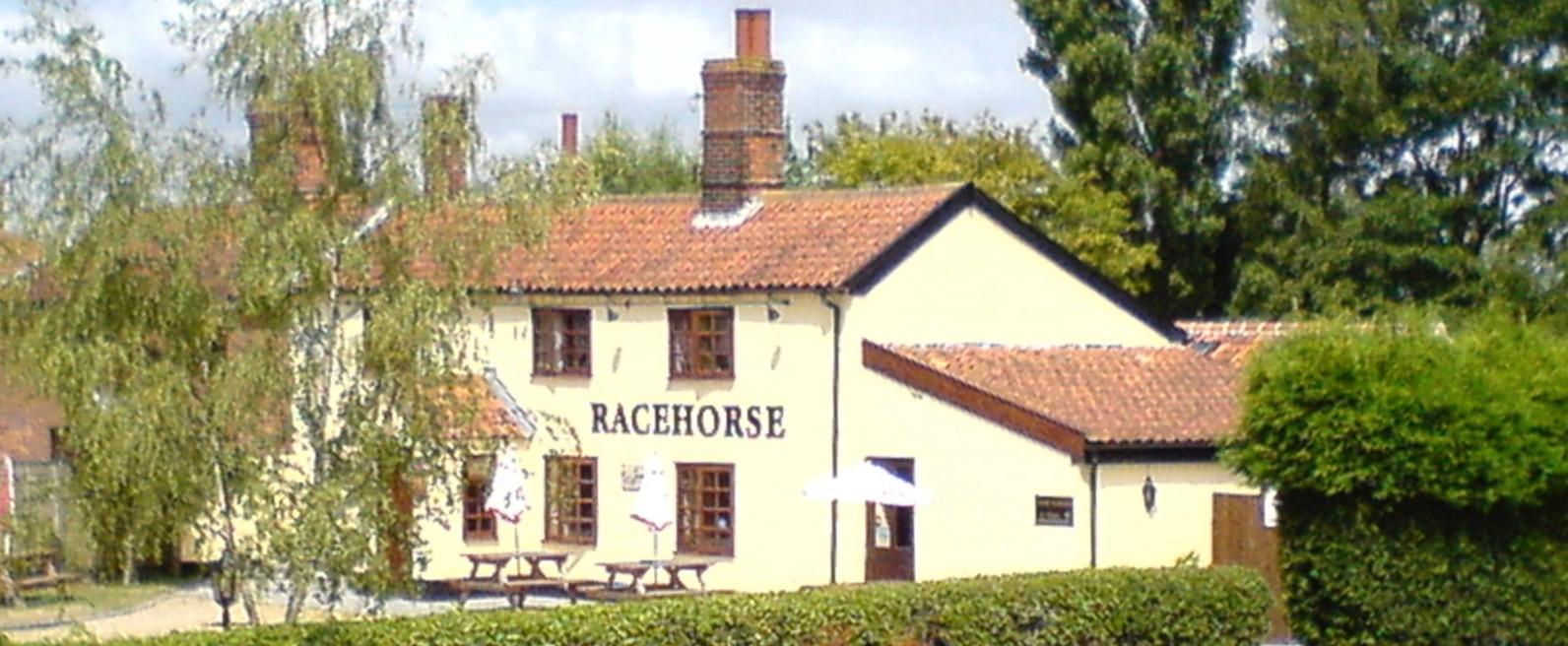 Racehorse06.jpg