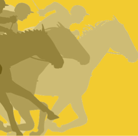 The Race for the Racehorse -