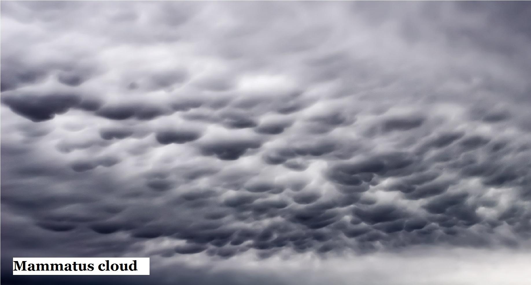 12 Mammatus cloud.jpg