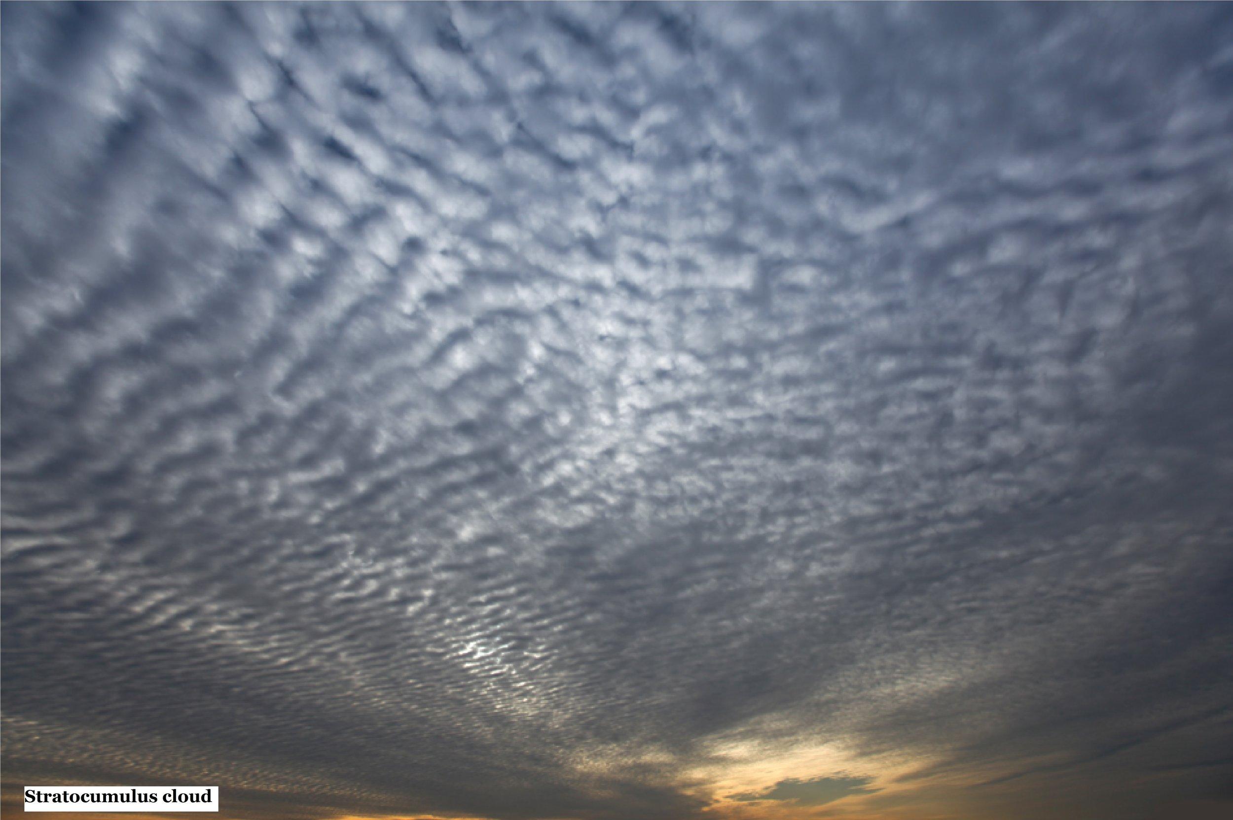 3 Stratocumulus cloud.jpg