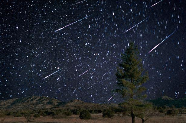 3_Leonid-meteor-shower.jpg
