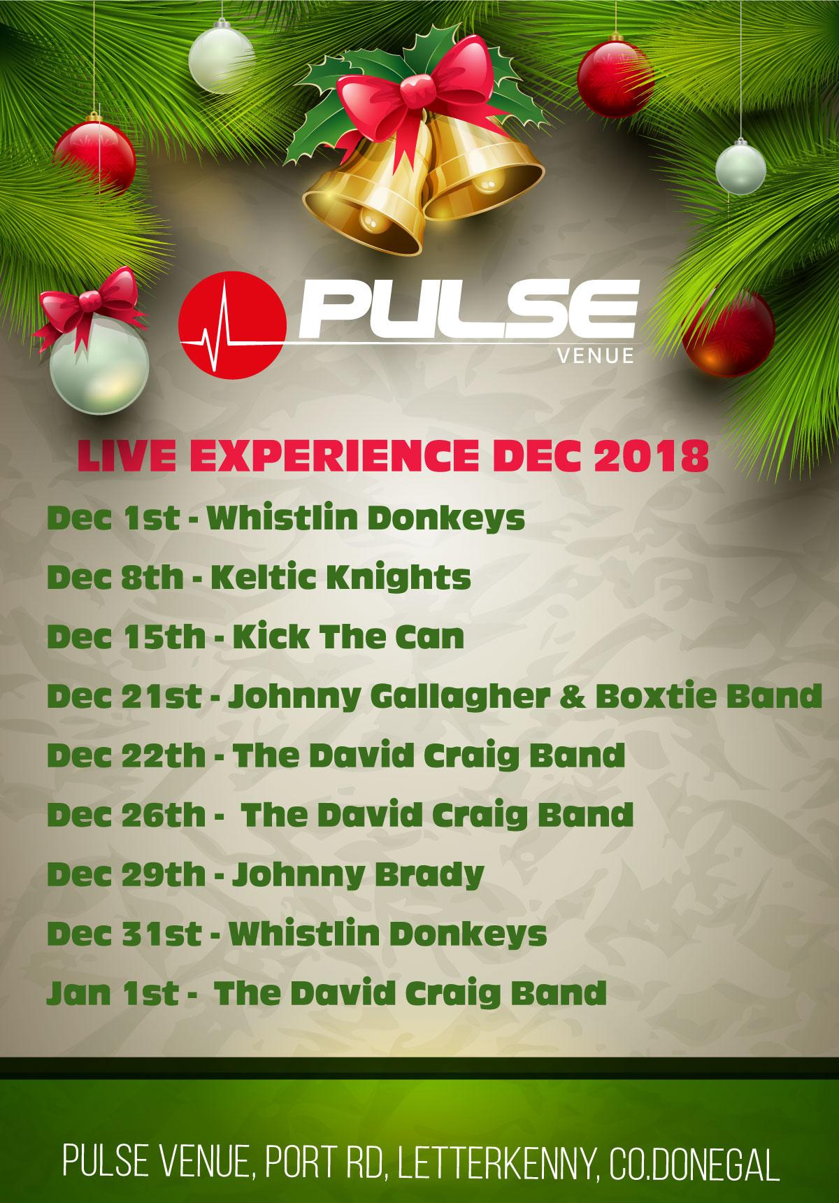 PULSE-VENUE-live-bands-dec-2018.jpg