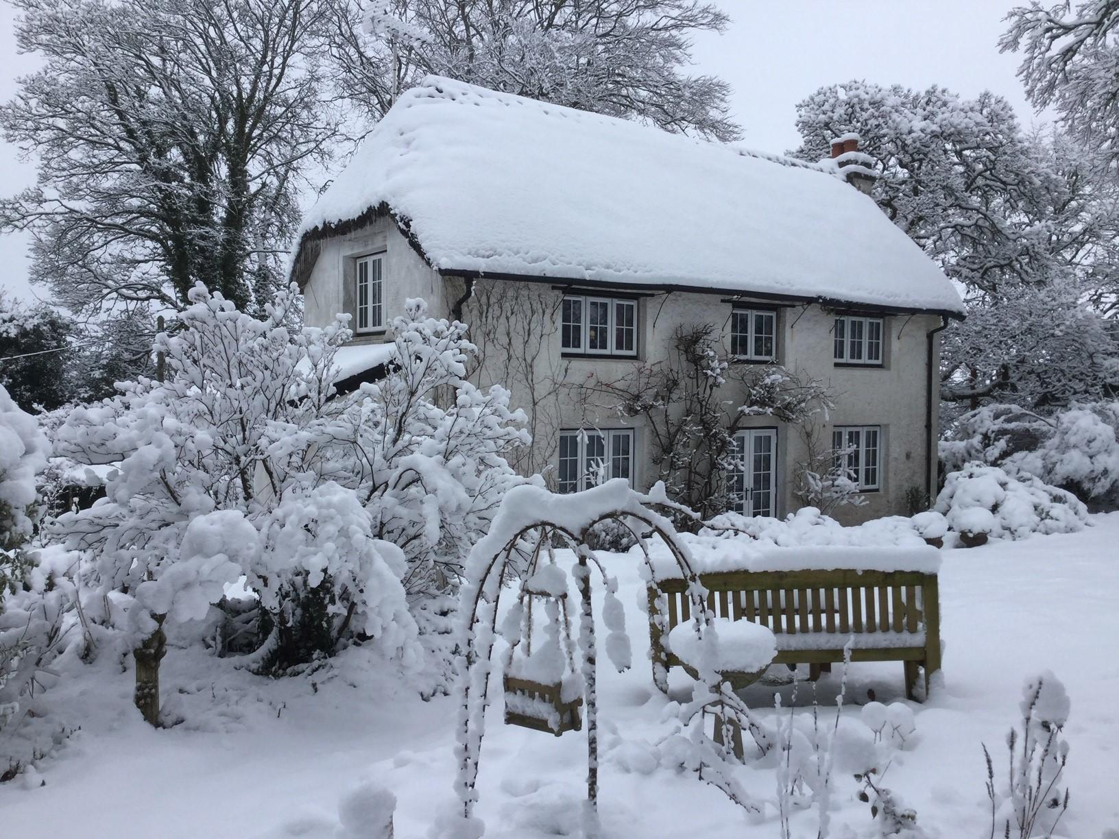 Snow in Throwleigh, Dartmoor. image by Kay Wild.