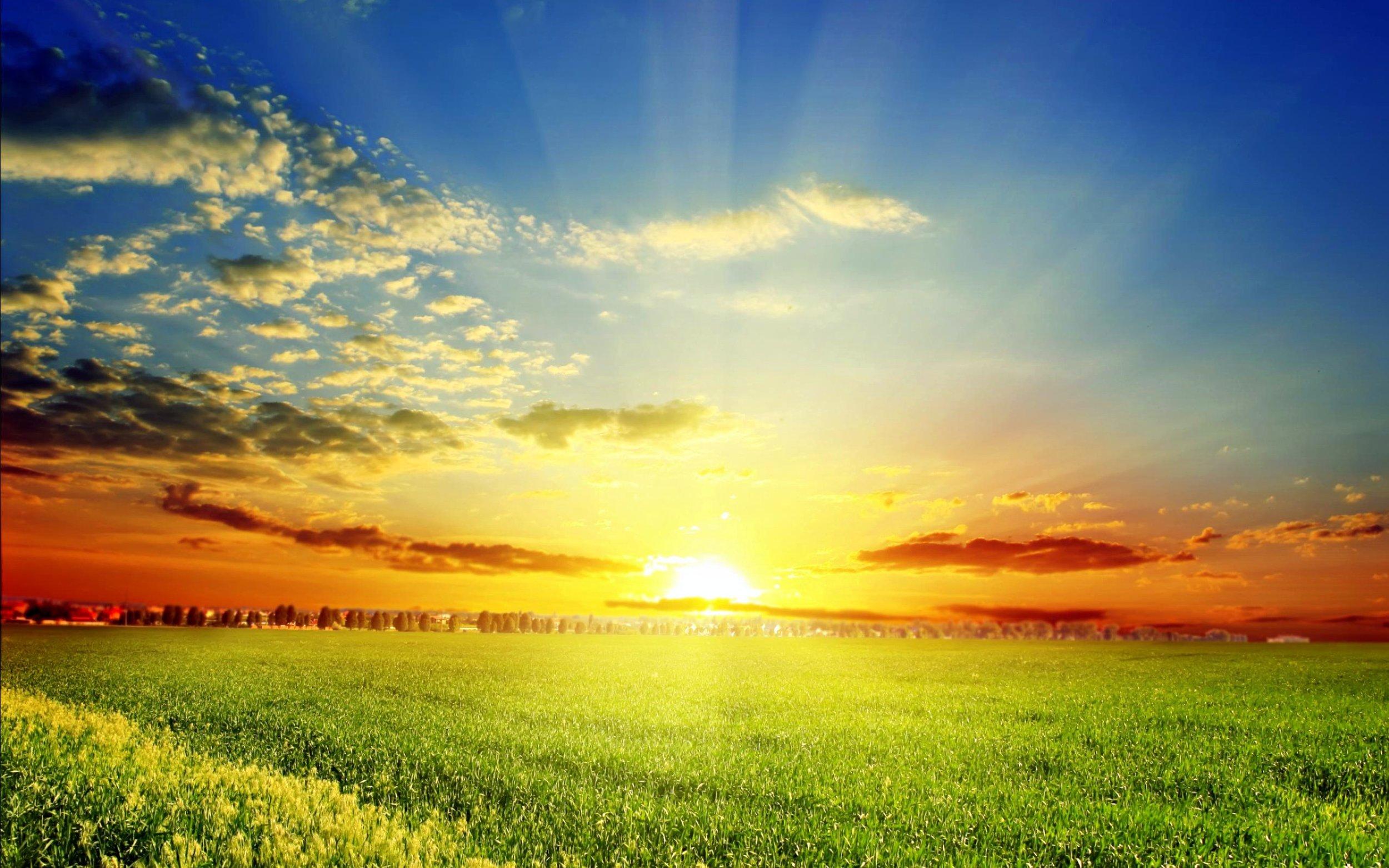 spring-sun-2560x1600-wallpaper.jpg