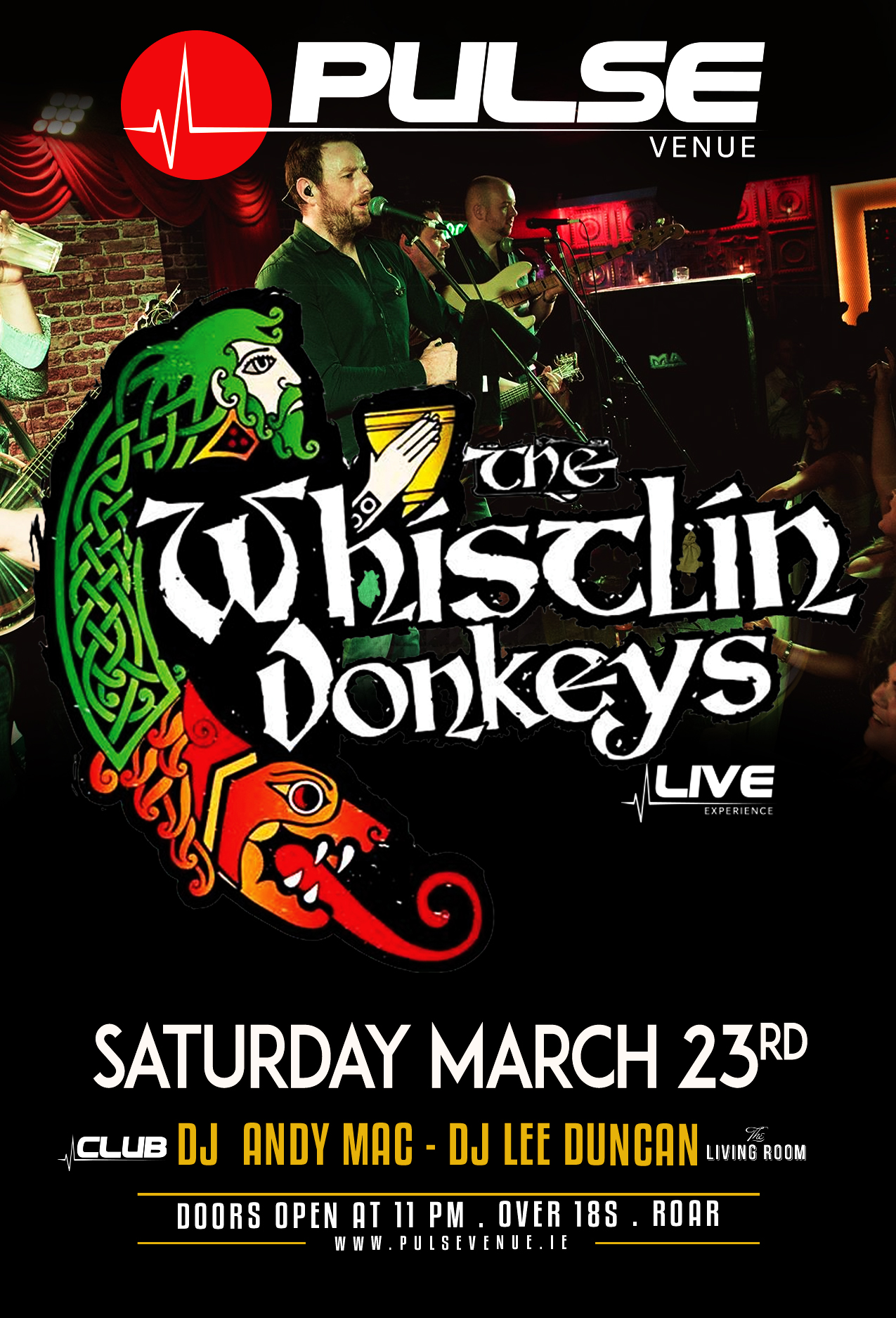 pulse-venue---the-whisltin-donkeys---andy-mac-lee-duncan---sat-march-23-2019.jpg