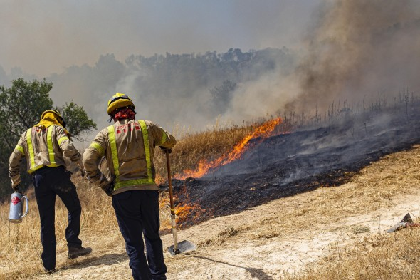 Firefighters try to extinguish a wildfire in Palma d'Ebre, near Tarragona, Spain, on Thursday, June 27, 2019. Authorities suspect the cause of the outbreak was a deposit of improperly stored manure. (AP Photo/Jordi Borras)