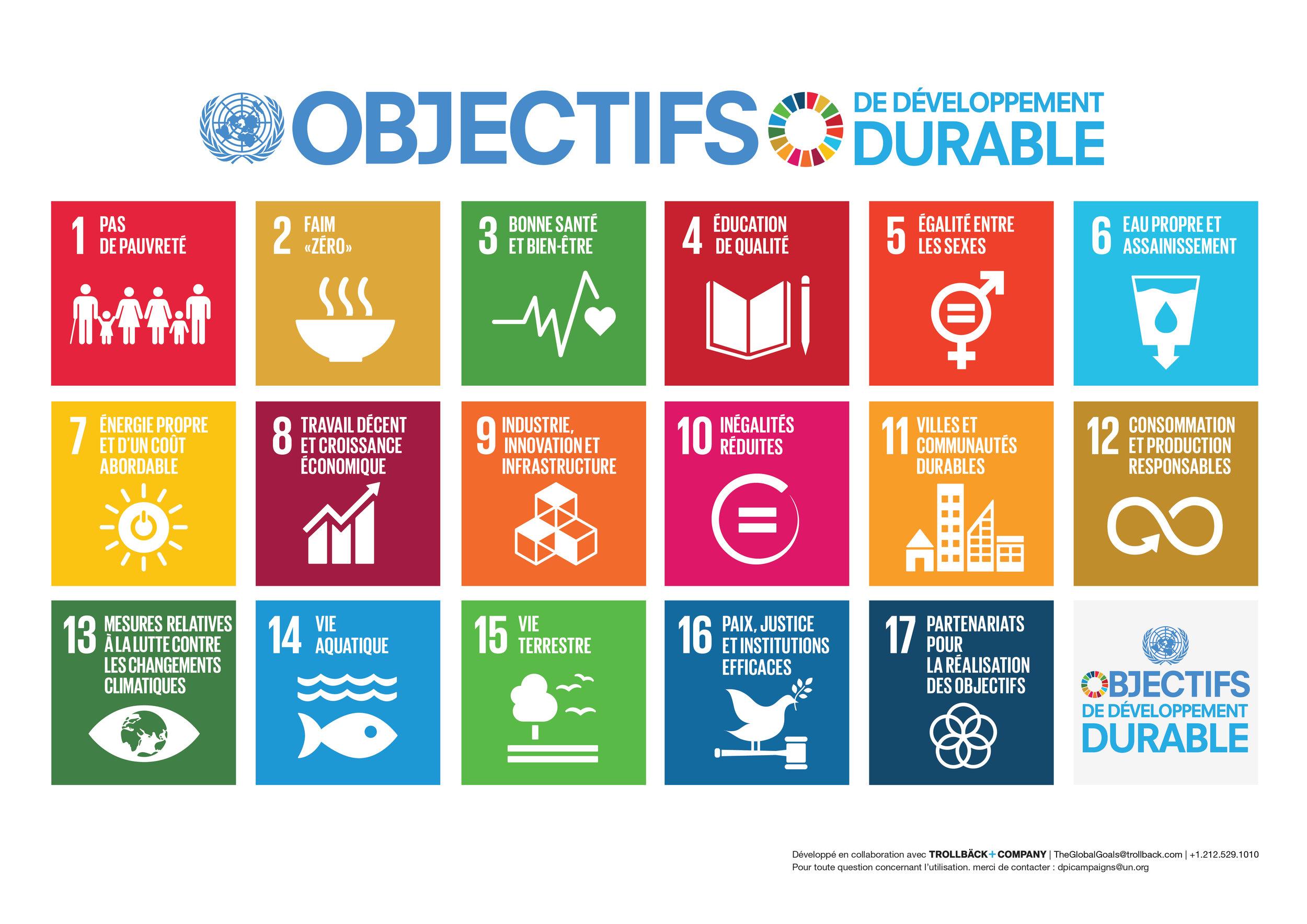 Les objectifs de développement durable de l'ONU en image