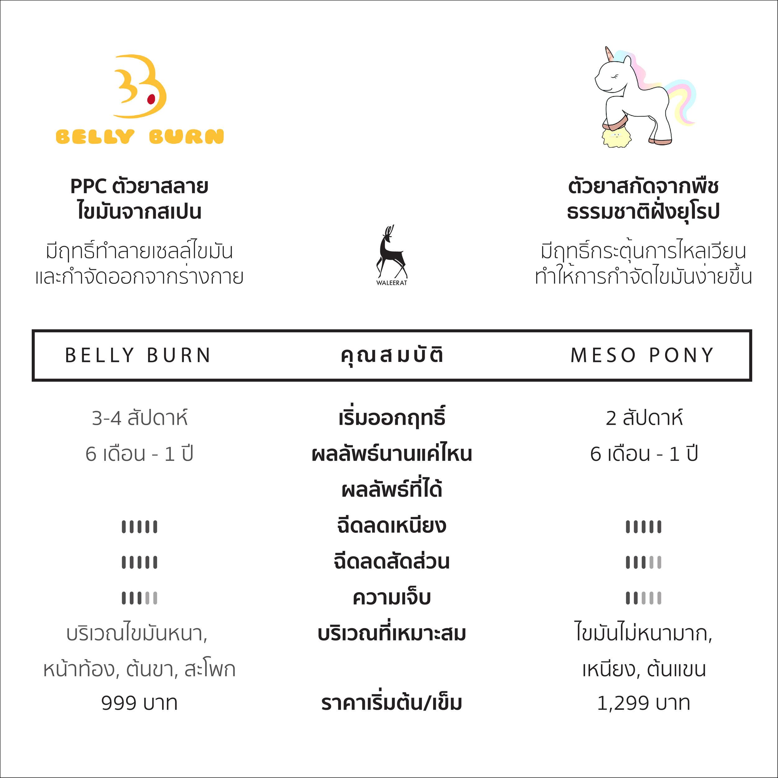 ฺBellyburn Vs Mesopony