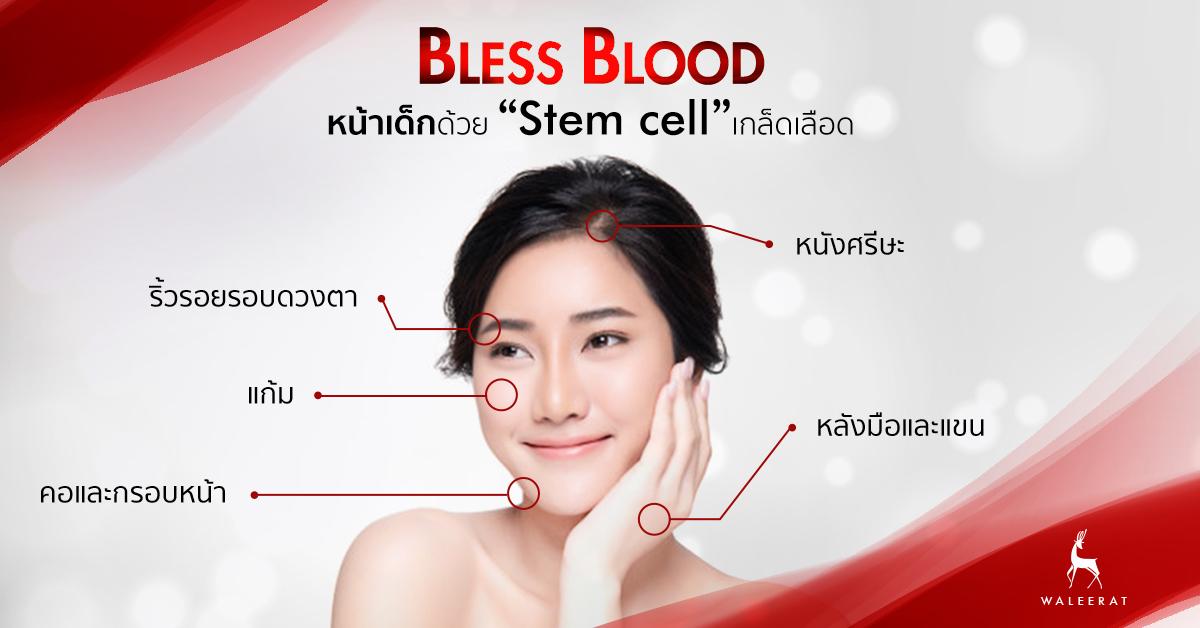 Bless Blood ทำส่วนไหนได้บ้าง