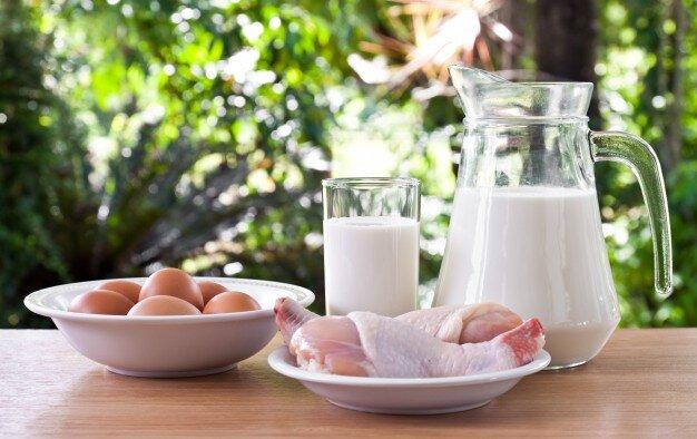 protein+food?format=original