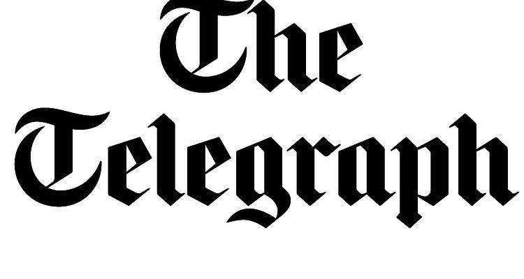 telegraph-logo.jpg.750x400_q85_box-0,559,2397,1838_crop_detail.jpg