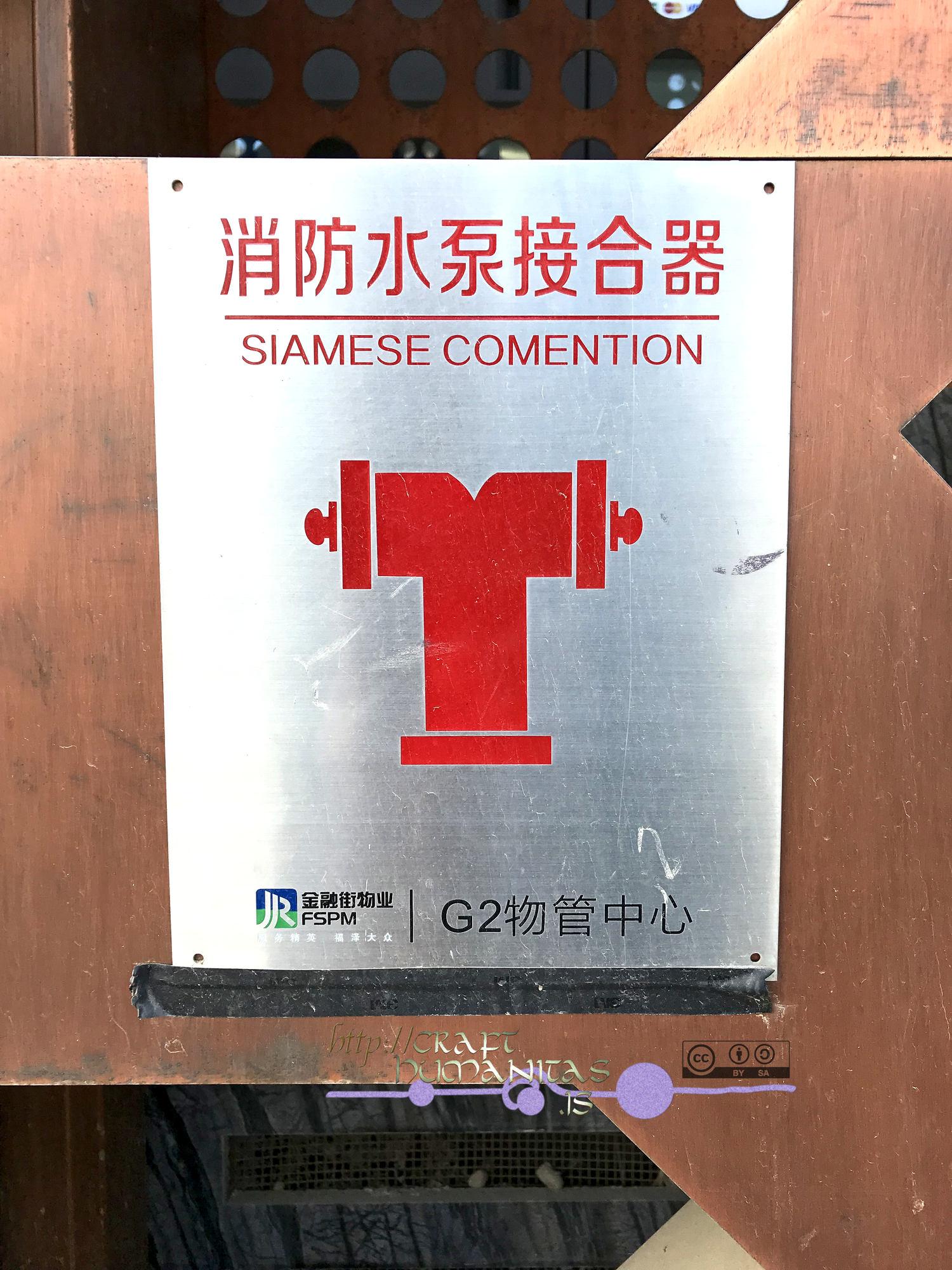 Chinglish marzo 2019.jpg