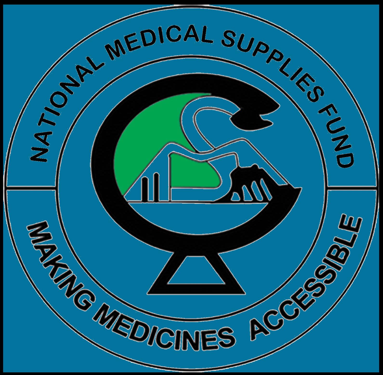 NMSF logo.png
