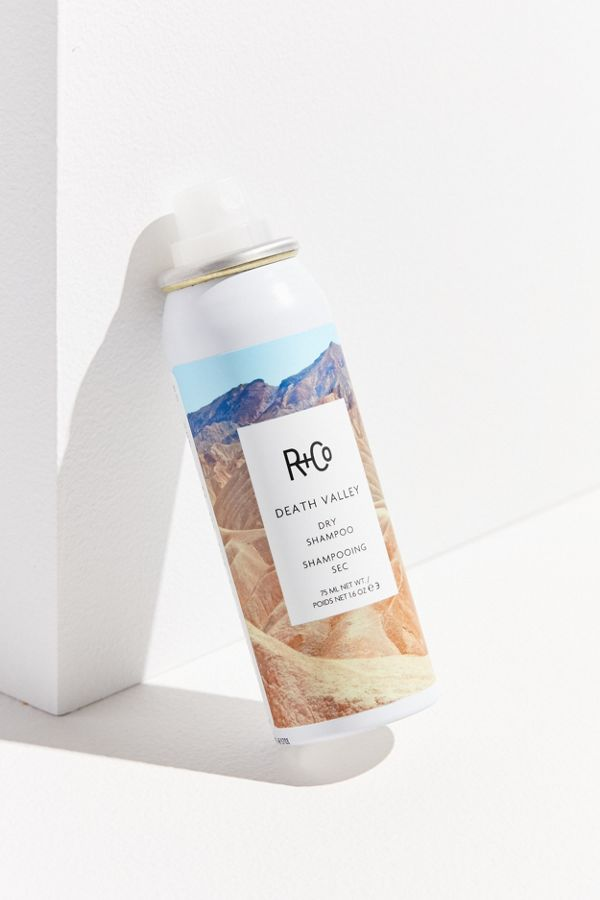 R and Co products Ari and Blair Salon
