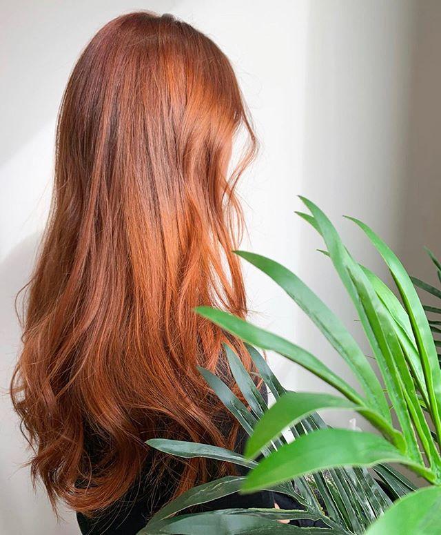 Who's loving all the warm tones this fall 🙋🏼♀️🍂 Hair by Tianna @spookyrazor #ariandblair #ariandblairsalon #yychair #yycsalon #yychairstylist #beautifulhairyyc #warmtones #fallhair