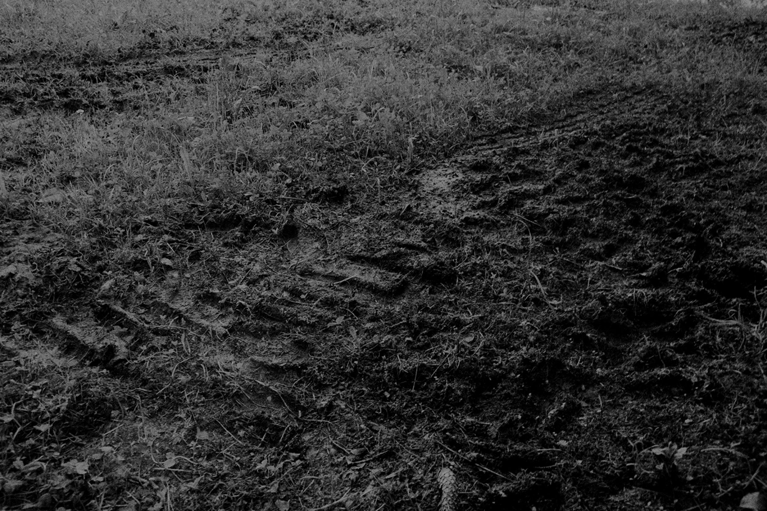 07_archiv_fotografie_meier_ueber_meier_weg.jpg