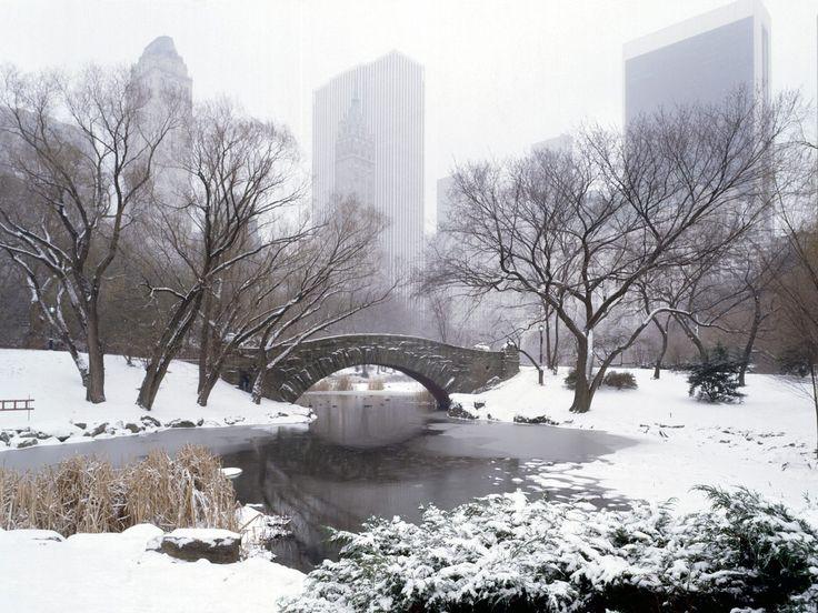 Snowy Central Park ( source: Pinterest)