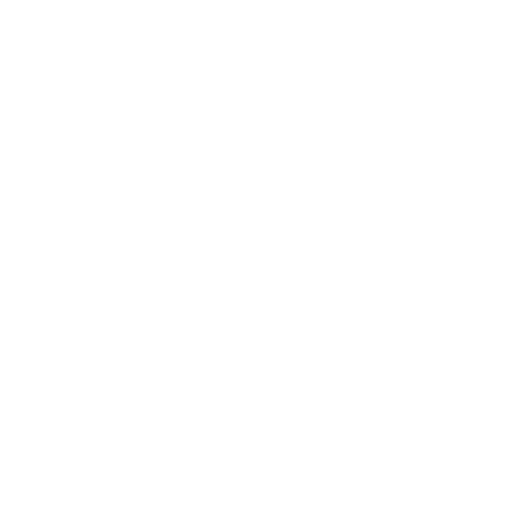North Point Leadership Experience Residency