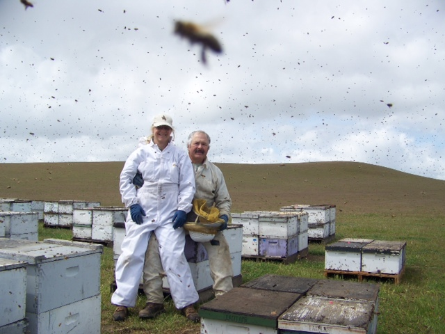 Even bees try to photo bomb!