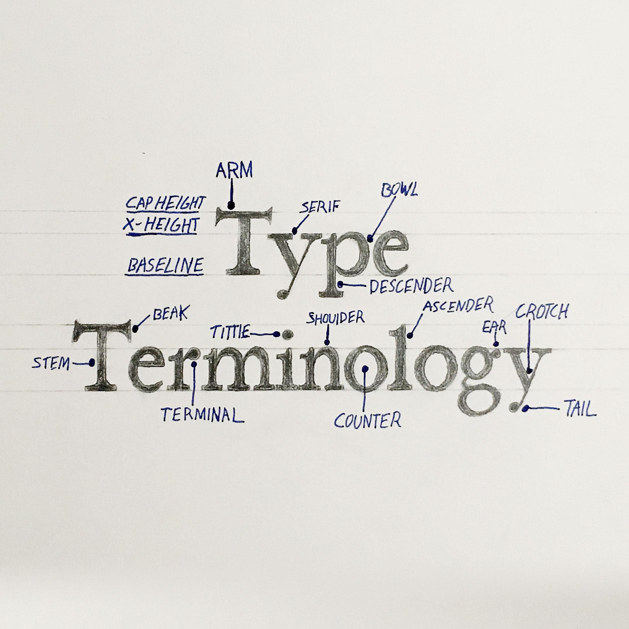 EDC_2017_Type_Terminology.jpg