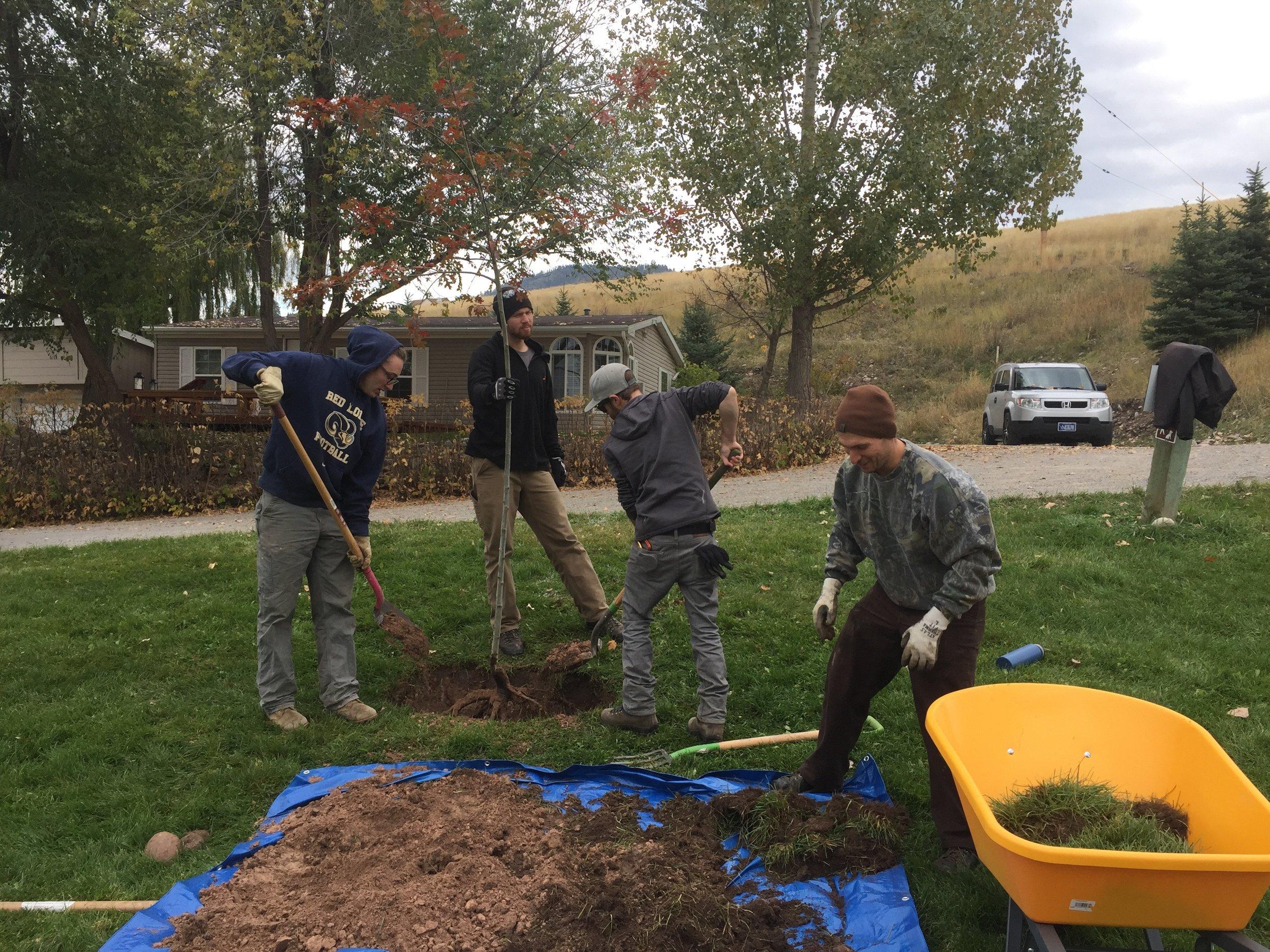 UM Students Planting.jpeg