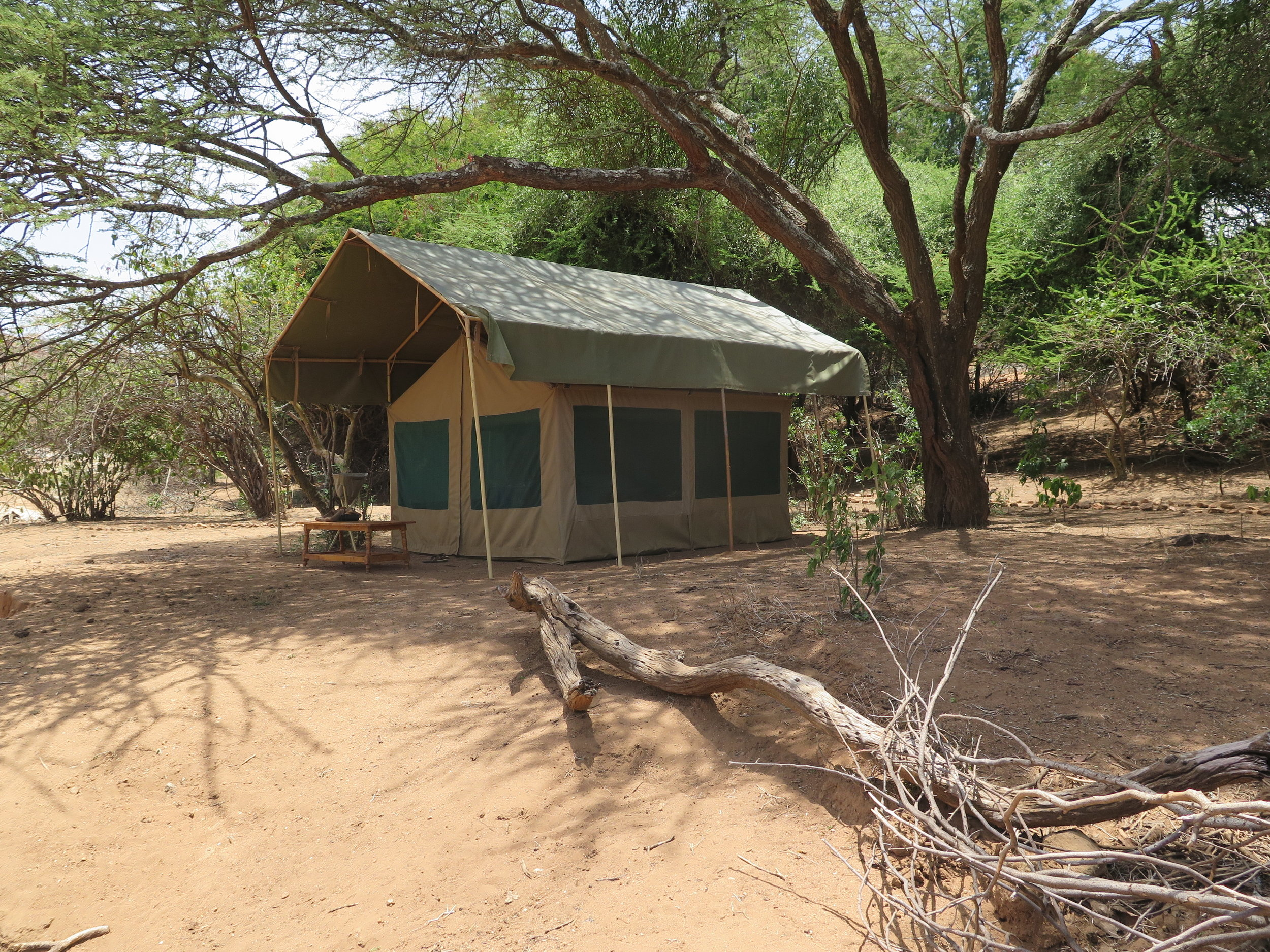 One of our tents at Pitari's Camp