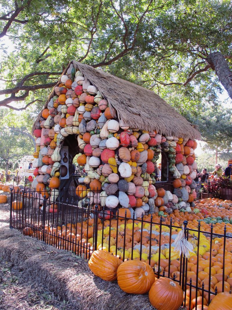 pumpkin-house.jpg