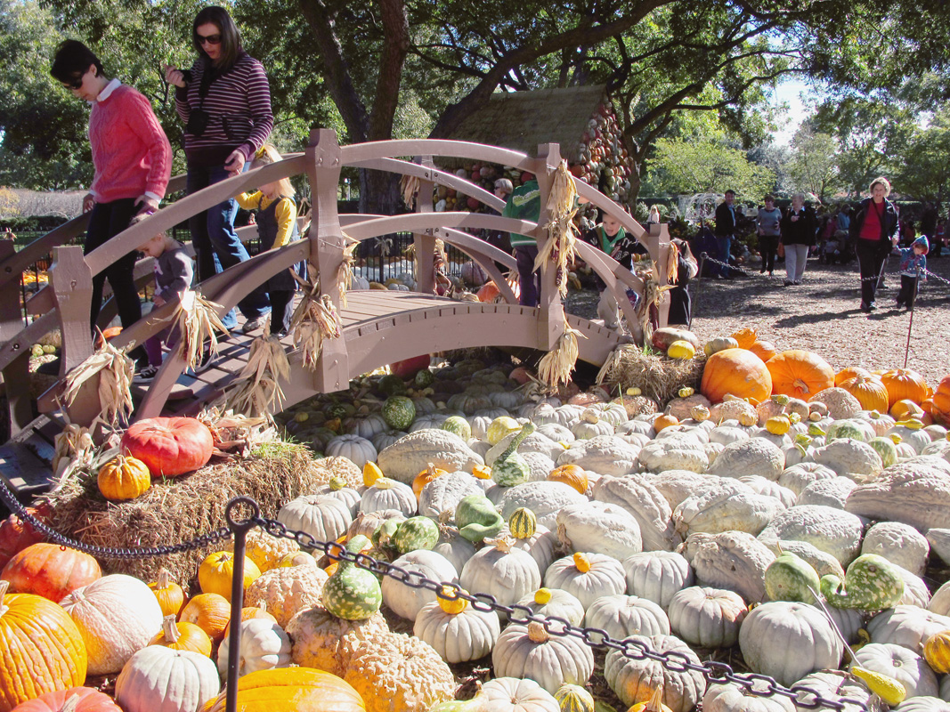 pumpkin-river.jpg